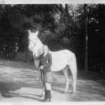 White Horse (Owned by Susan Rimmington) 1948