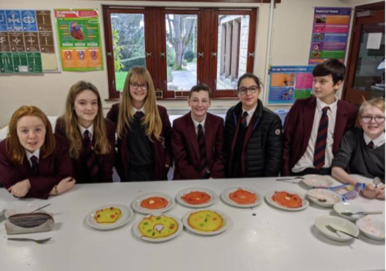 Year 9 explores cell revision using sweets