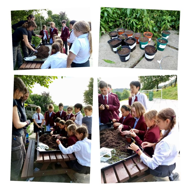 The help of our wonderful gardeners